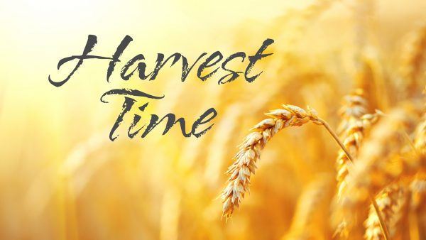 By and By the Harvest Image
